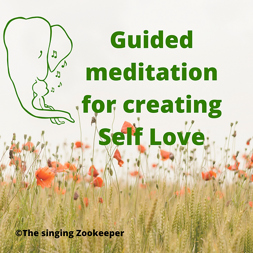 A Guided Meditation to create Self Love