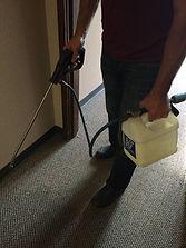 Carpet Conditioning
