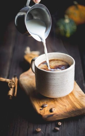 Pumpkin Cafe de Olla - Mexican coffee with a mix of clove, cinnamon, and milk. We added pumpkin for an extra special fall addition.: