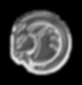 RAM-head-2019.png