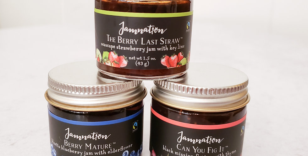 Jamnation Mini Trio