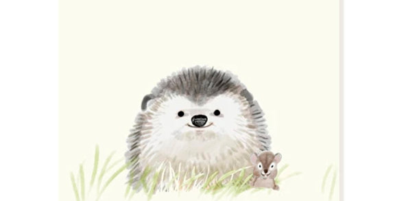 Lil Hedgie Note Card Set