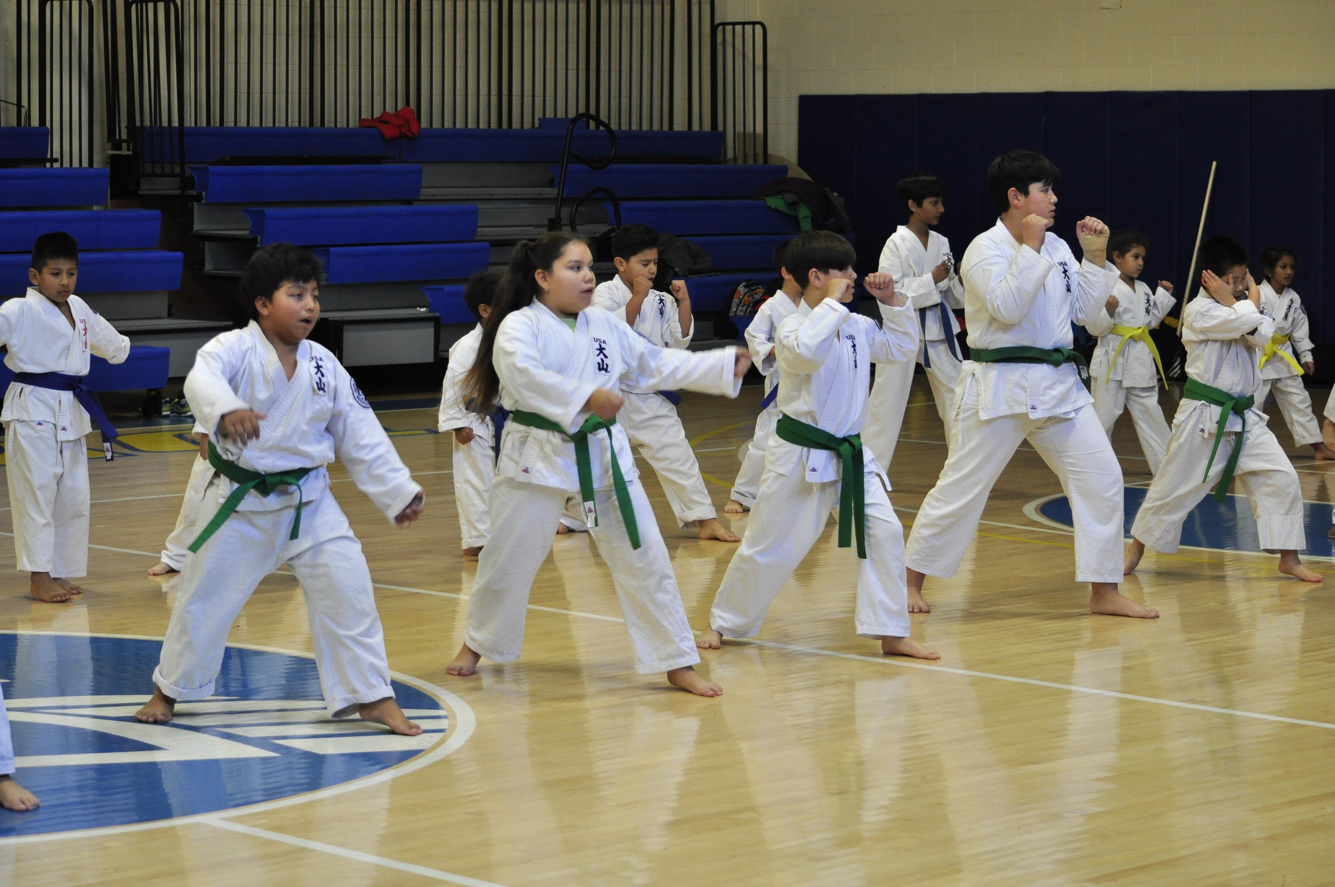 TDYCC Karate-0693