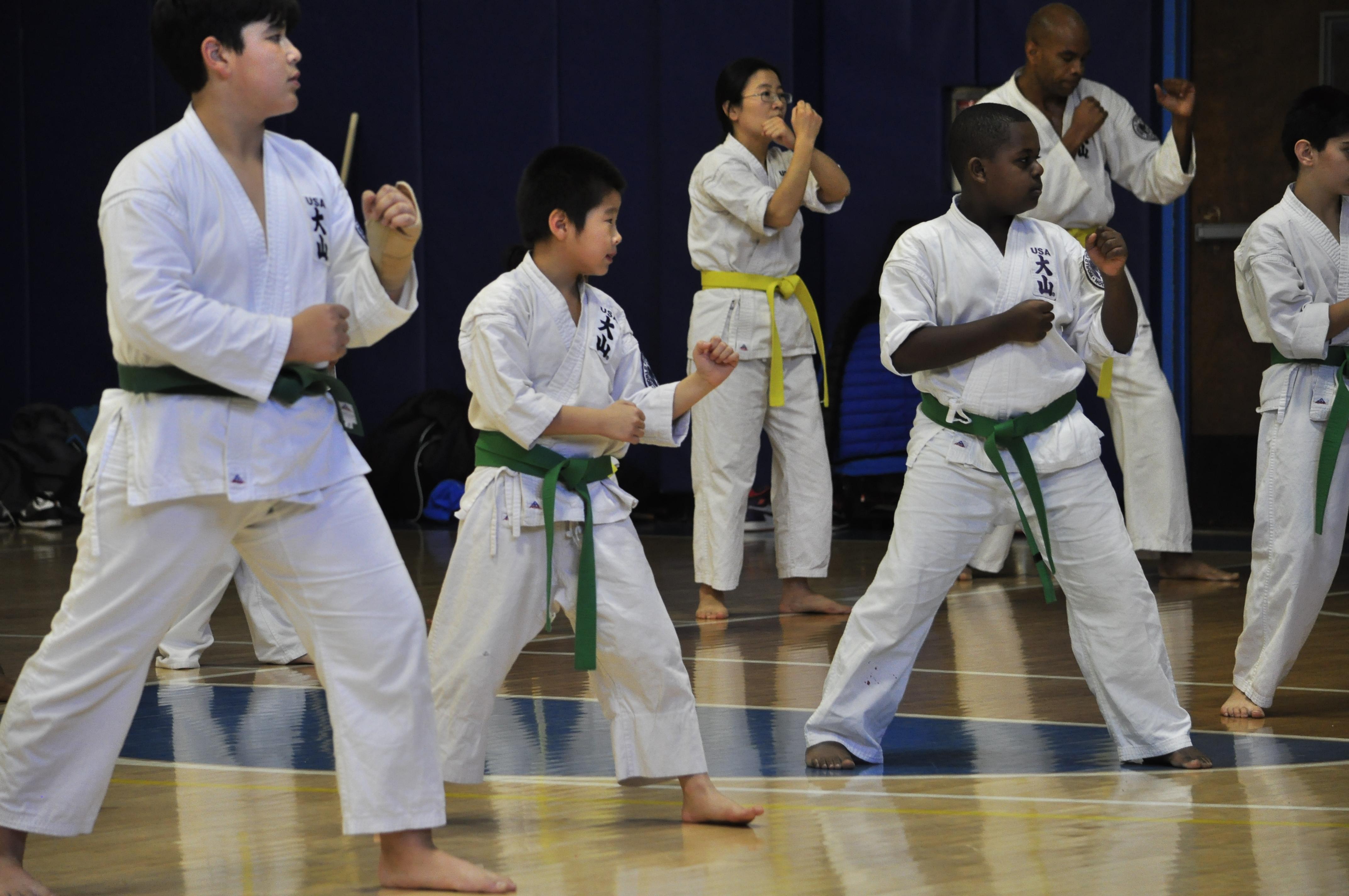 TDYCC Karate-0694