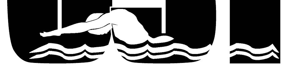 CST SWIM TEAM LOGO-FINAL-071519.jpg