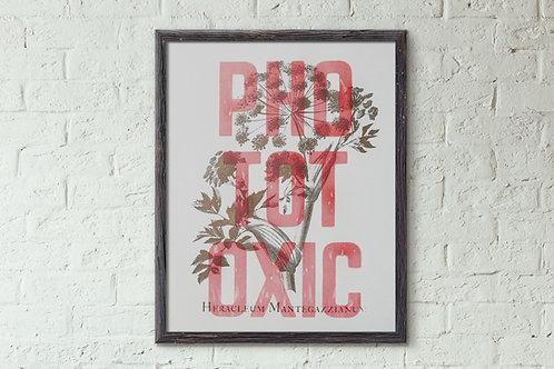 Phototoxic