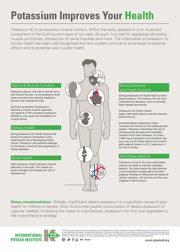 Infographic posters IPI