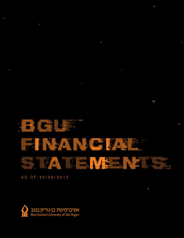 BGU Financial Statements 2012