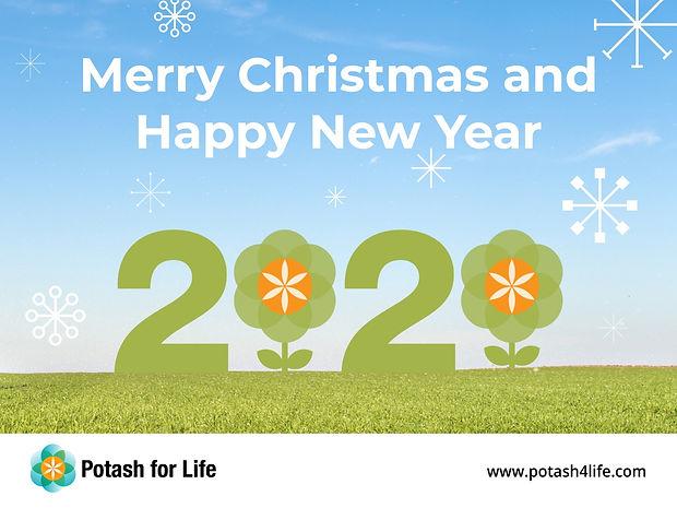 PFL New Year card 2020