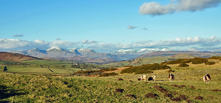 View to Coniston Water