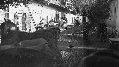 1933 street scene 2 with chicken.jpg