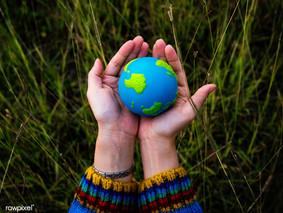 Curso Virtual de Educación Ambiental