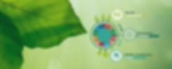 Copia de ambiente y sostenibilidad (2).p