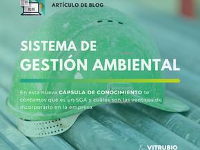 Importancia del Sistema de Gestión Ambiental en la empresa.