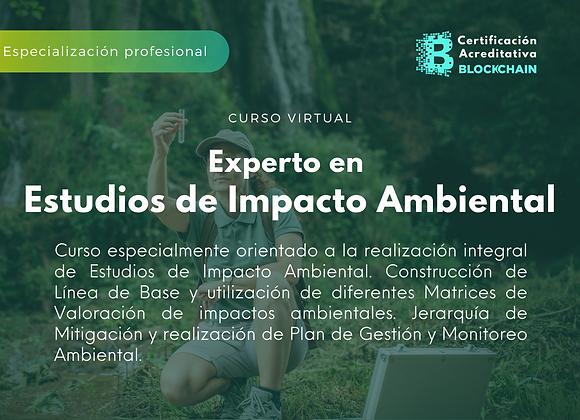 Programa Experto en Estudios de Impacto Ambiental