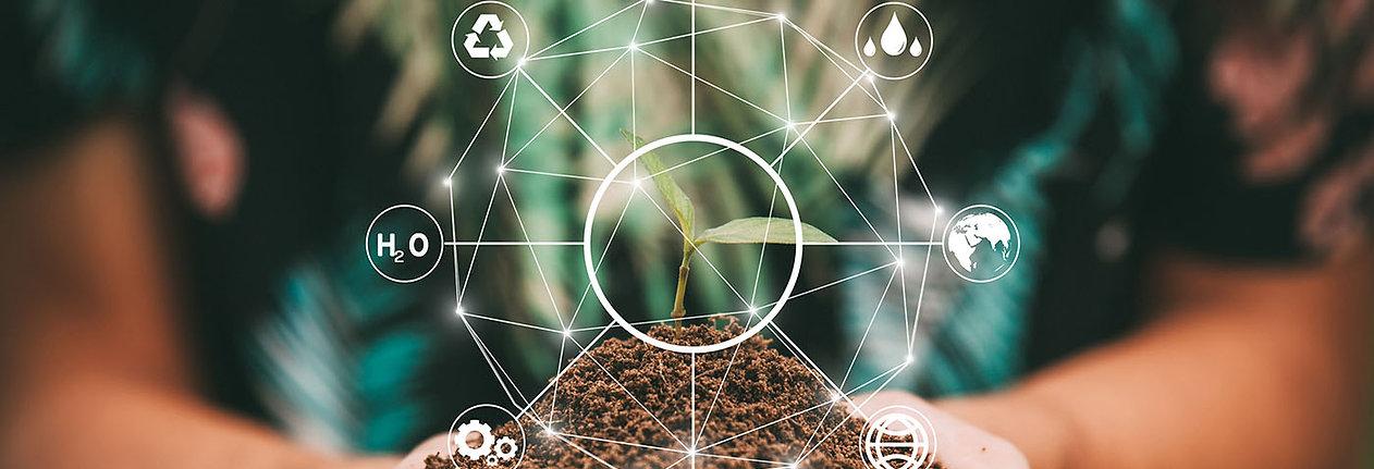 sustainable-business-model.jpg