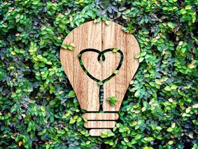 Asesoramiento a emprendedores verdes
