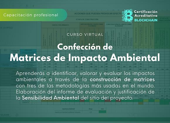 Curso Virtual Confección de Matrices de Impacto Ambiental