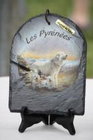 Récompense de la Meilleur Expression Montagne des Pyrénées, offerte par Mme Morin Sandrin Angélique