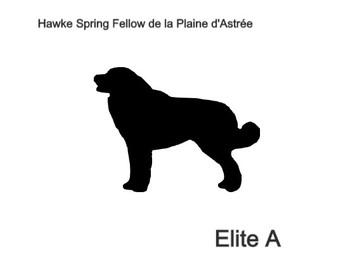 Hawke Spring Fellow de la Plaine d'Astrée