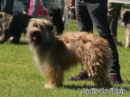 Jadis-2_Spéciale_d'Evreux-photo_BOULER.
