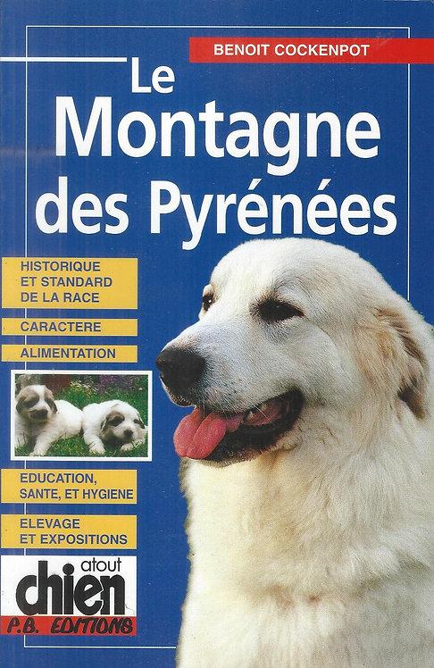 Le Montagne des Pyrénées