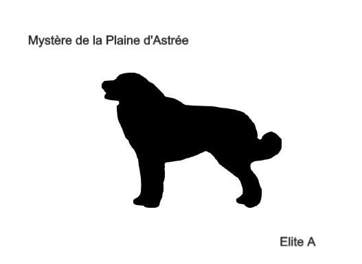 Mystere de la Plaine d'Astree