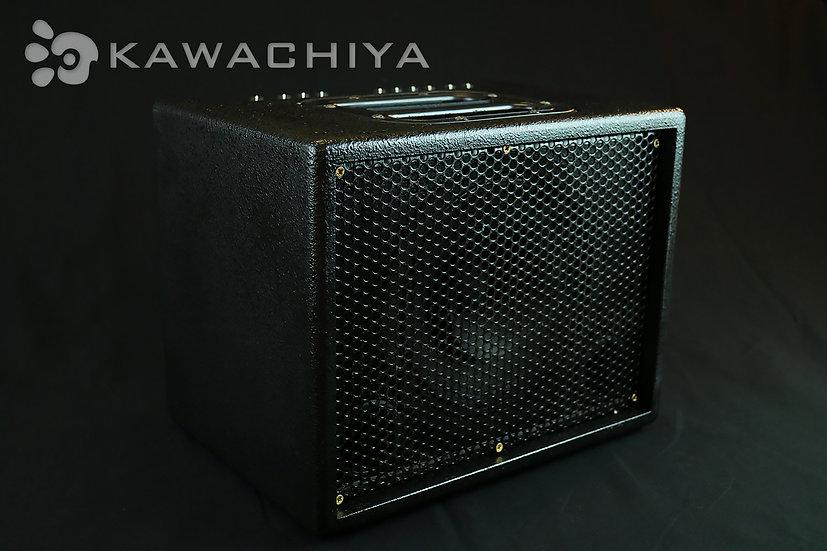 AER BINGO 2 正規輸入品 Acoustic Amp