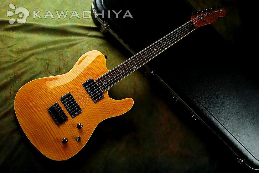 Fender Special Edition Series Custom Telecastor FMT HH