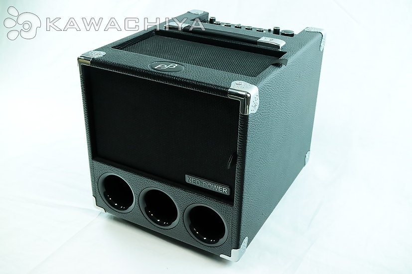 Phil Jones Bass PJB BG-150 Flightcase 150W Amp