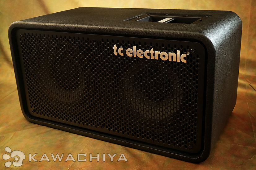 tc electronic RS210 Bass Cabinet 2×10