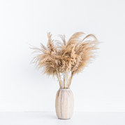 """Black and Light Studio 40"""" inch Natural Dried Pampas Grass Stems"""
