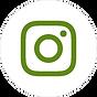 Instagram blanc et vert foncé.png