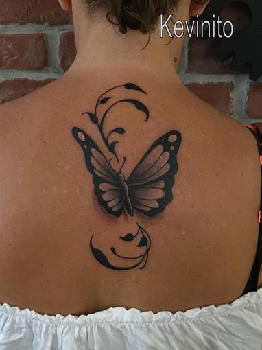 papillon ng arab.jpg