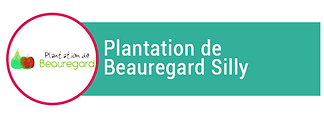 plantations-beauregard.png