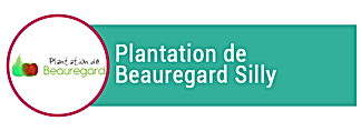 plantations-beauregard.png