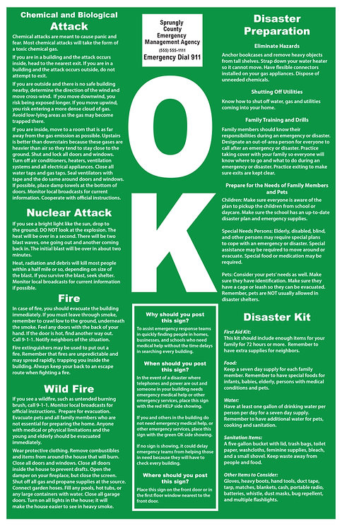 2 Sided Disaster Poster