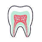 dental icon-03.jpg