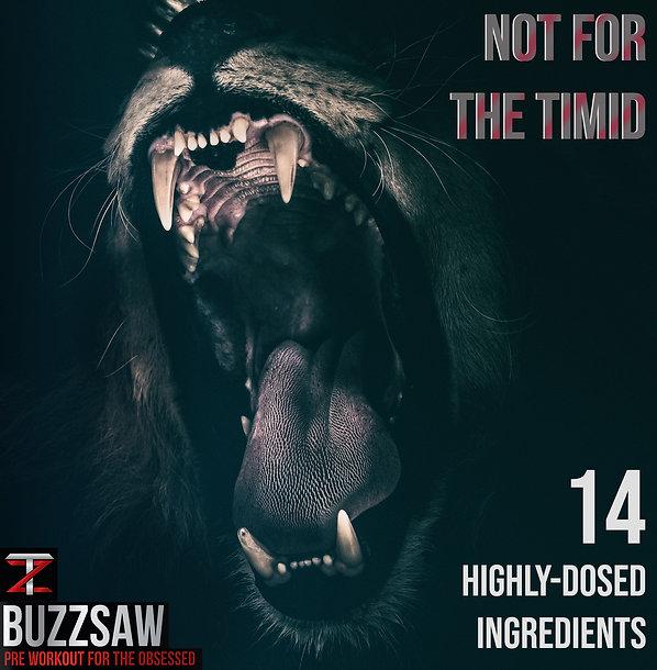 buzzsaw lion.jpg