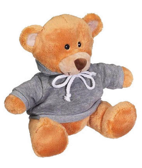 Personalized Embroidery teddy with hoodies gift
