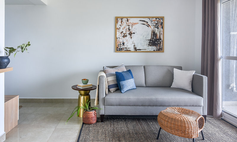 grey couch living room.jpg