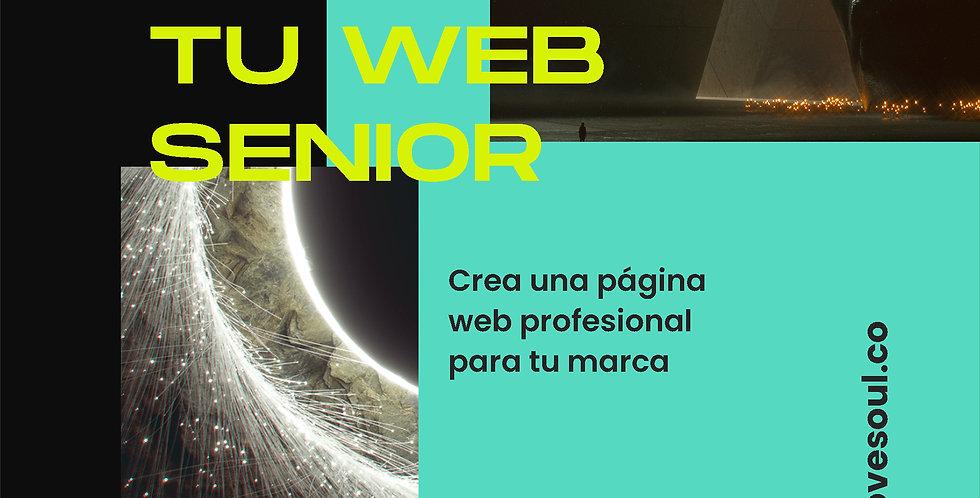"""Paquete de desarrollo web """"Senior"""""""