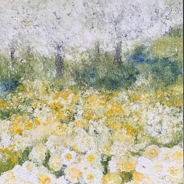 Daft for Daffodils