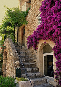 Painting bougainvillea and ancient hilltop villages in Provence with Wietzie