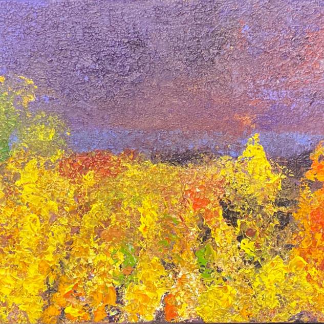 L'automne en Provence