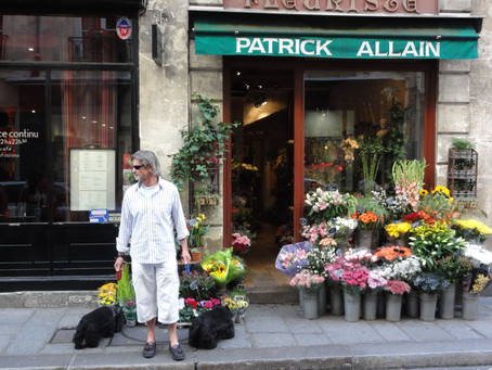 Two Scotties in Paris