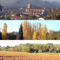 The colours of fall around our village, Lorgues