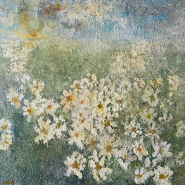 April Daisies