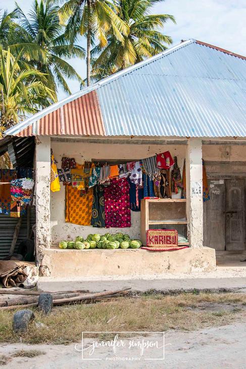 Zanzibar 045.JSP lrs.jpg