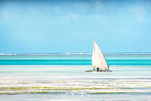 Zanzibar 006.JSP lrs.jpg